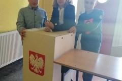 wybory-2-Resizer-800